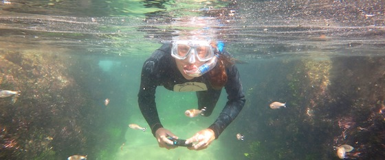 Snorkeling in Ballito, KwaZulu-Natal, South Africa