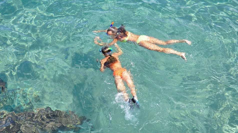 Discover Snorkelling Safari